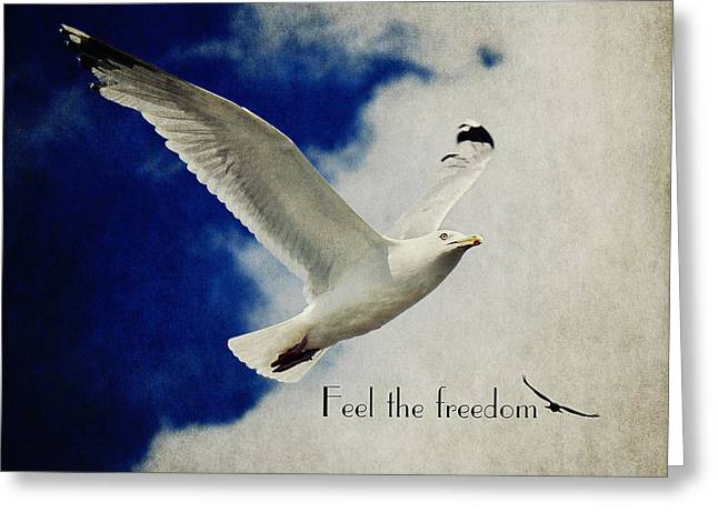 Feel The Freedom Greeting Card by Angela Doelling AD DESIGN Photo and PhotoArt