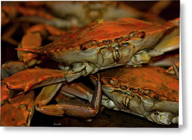 Blue Crab Greeting Cards - Feeling Crabby Greeting Card by Betsy C  Knapp