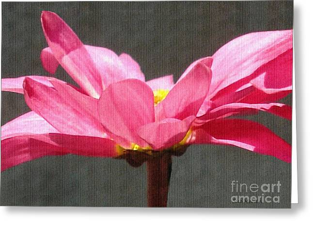 Feeling Free Greeting Card by Sue Melvin