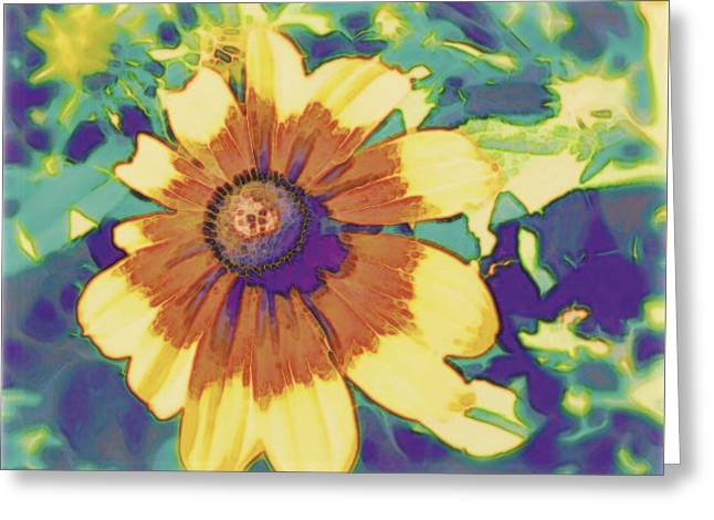 Greeting Card featuring the photograph Feeling Groovy by Karen Shackles