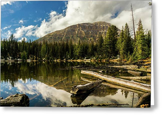 Fehr Lake Greeting Card by TL Mair