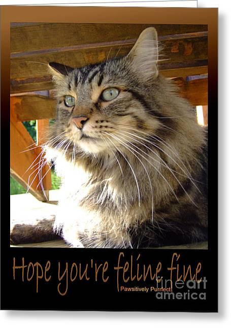 Feline Fine Greeting Card