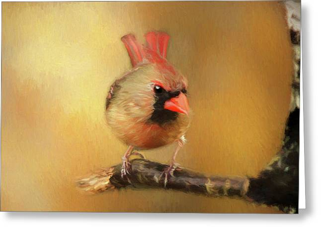 Greeting Card featuring the photograph Female Cardinal Excited For Spring by Darren Fisher
