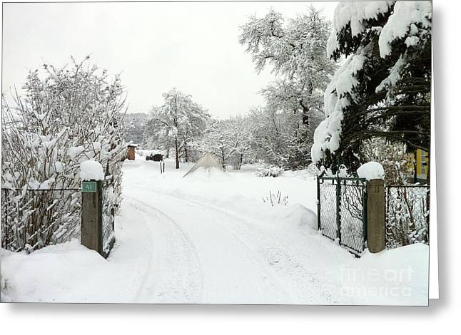 Fence And  Gate In Winter Greeting Card