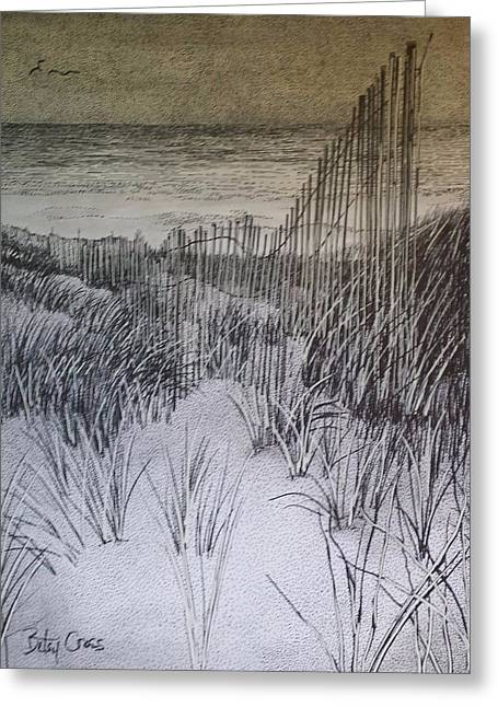 Fence In The Dunes Greeting Card