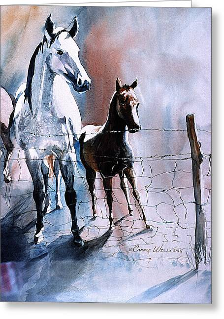Fence Line Horses Greeting Card