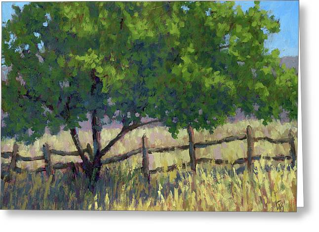 Fence Line Tree Greeting Card