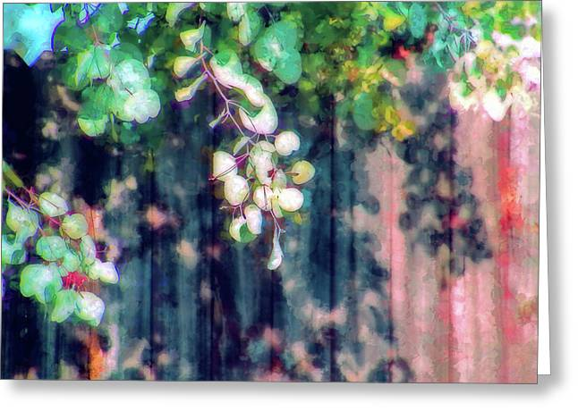 Fence Painting Greeting Card by Terry Davis