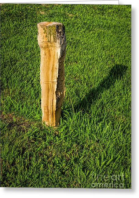 Fence Post Greeting Card by Jon Burch Photography