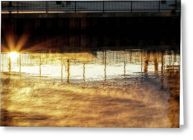 Fence Reflected Greeting Card by Terry Davis