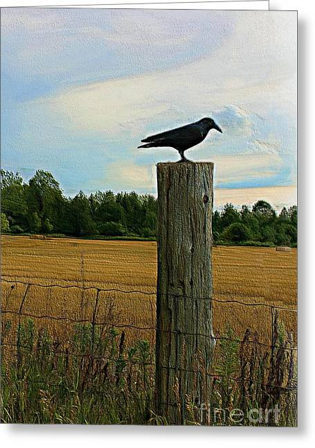 Fence Watcher Greeting Card by Anthony Djordjevic
