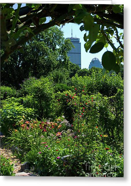 Fenway Victory Gardens In Boston Massachusetts  -30951-30952 Greeting Card