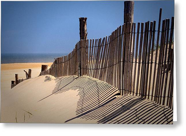 Fenwick Dune Fence And Shadows Greeting Card