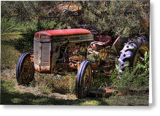 Ferguson Tractor Greeting Card by David Patterson