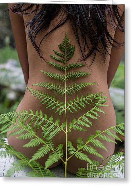Fern And Woman Greeting Card
