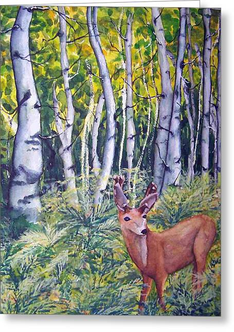 Fern Hollow Greeting Card by Sandy Collier