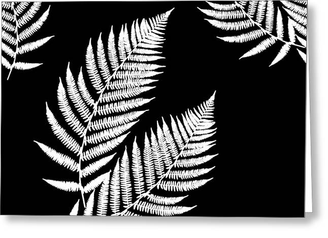 Greeting Card featuring the mixed media Fern Pattern Black And White by Christina Rollo