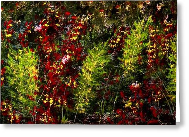 Ferns And Berries Greeting Card