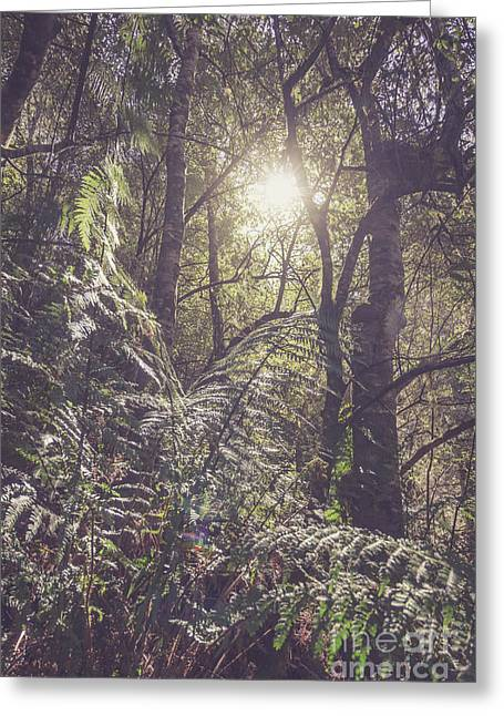 Ferns And Sunshine Greeting Card