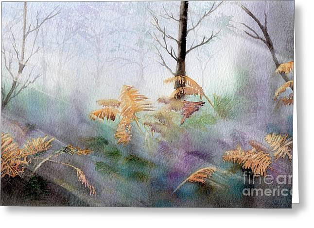 Ferns In The Forest Greeting Card by Kim Hamilton