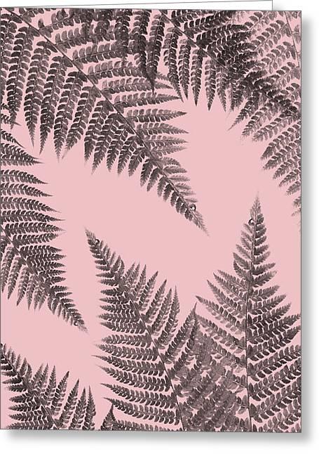 Ferns On Blush Greeting Card