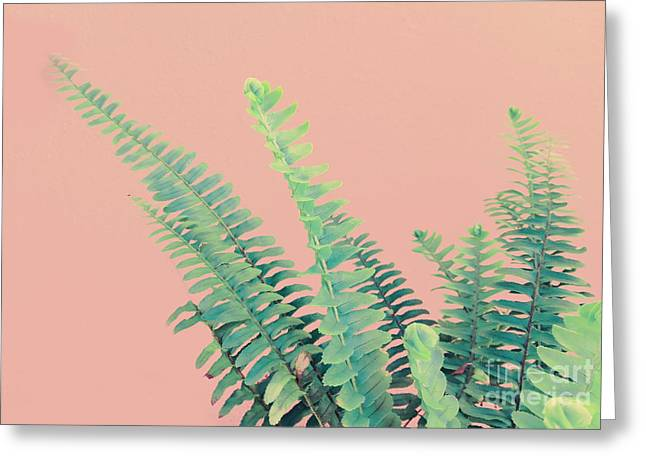 Ferns On Pink Greeting Card