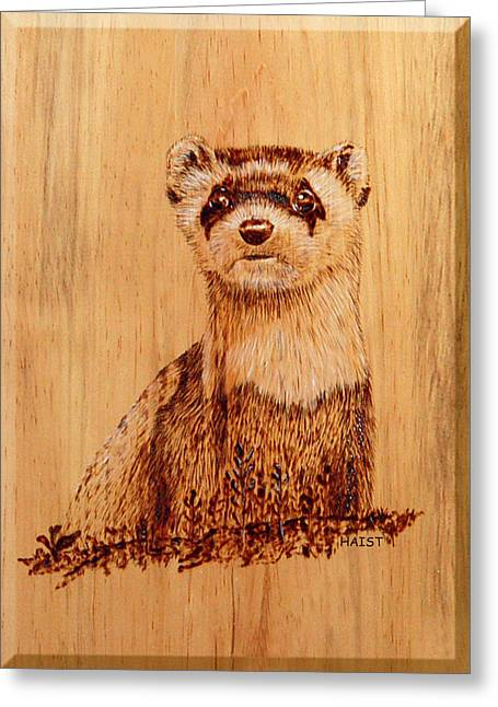 Greeting Card featuring the pyrography Ferret by Ron Haist