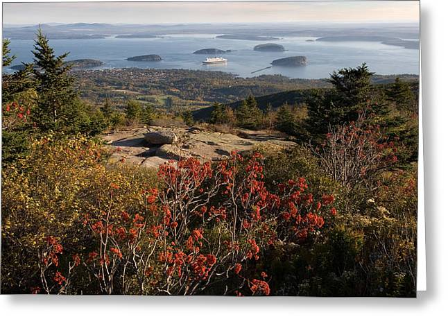Ferry In The Sea, Bar Harbor, Porcupine Greeting Card by Panoramic Images