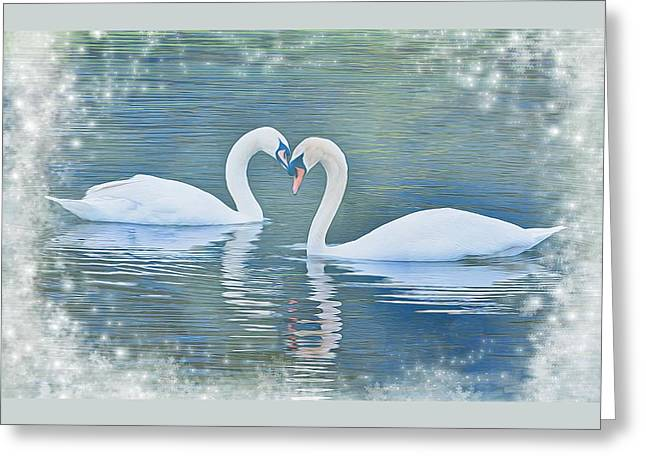 Festive Swan Love Greeting Card