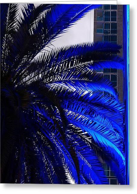 Blue Palms In Miami Greeting Card by Carlos Amaro