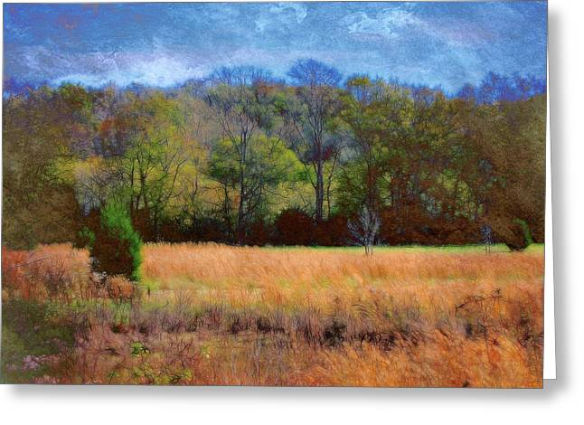 Field And Trees Greeting Card