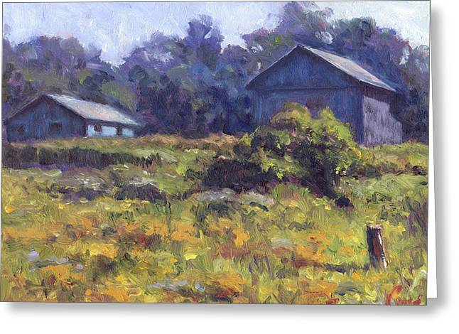 Field, Barn, And Shed Greeting Card