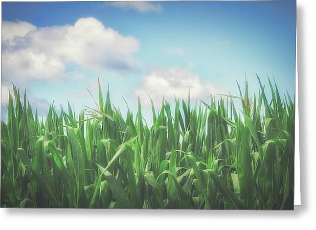 Field Of Corn Greeting Card
