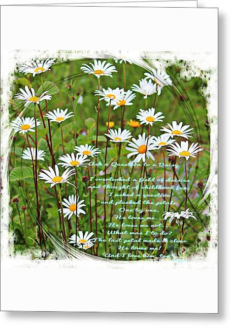 Field Of Daisies Greeting Card by Barbara Griffin