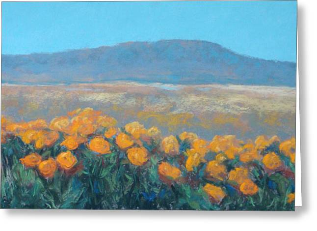 Field Of Dreams Greeting Card by Debra Mickelson