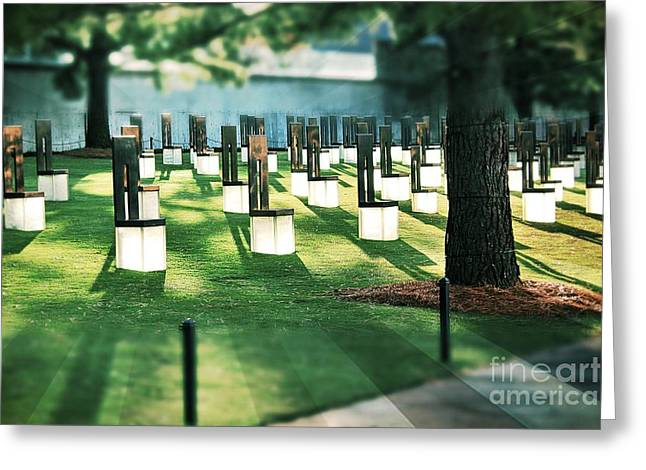 Field Of Empty Chairs Greeting Card
