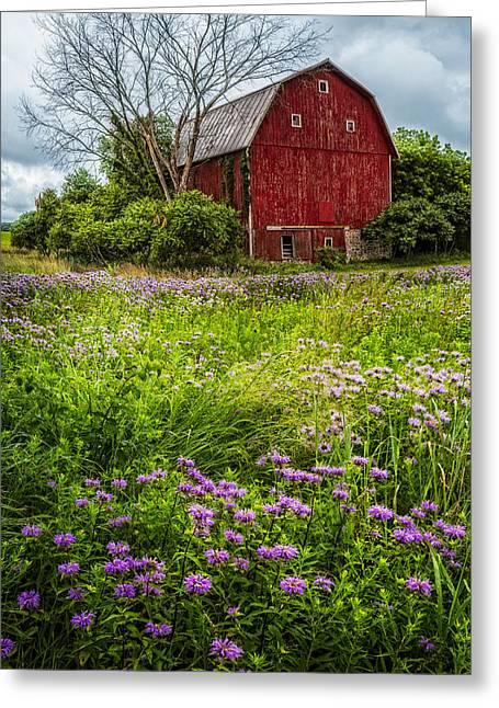 Field Of Flowers Greeting Card by Debra and Dave Vanderlaan