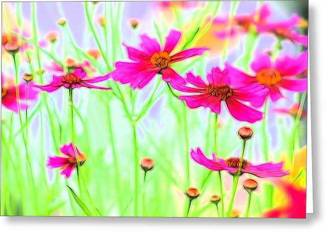 Field Of Fushia Greeting Card