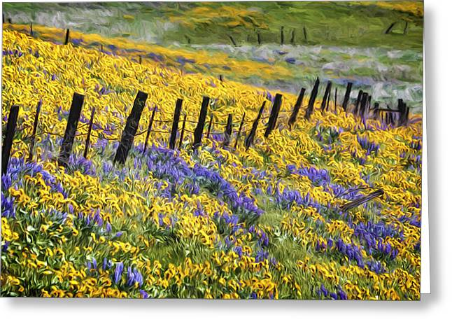 Field Of Gold And Purple Greeting Card