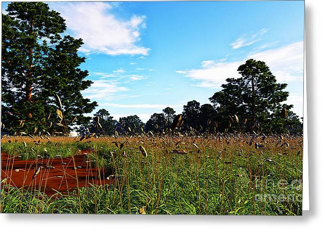 Field Of Grass Greeting Card by Napo Bonaparte