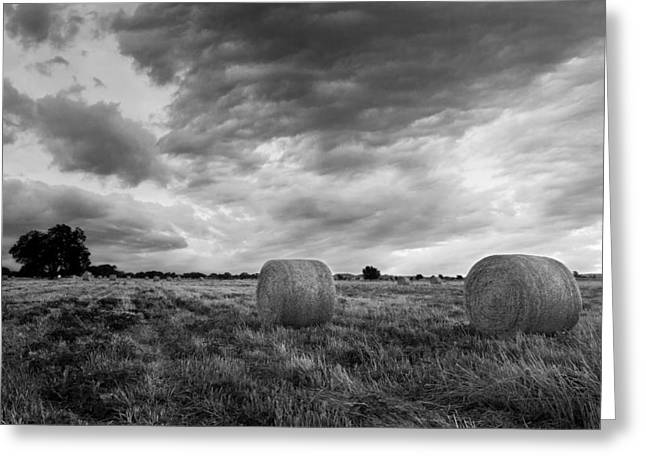 Bale Greeting Cards - Field of Hay Black and White 2 Greeting Card by Paul Huchton