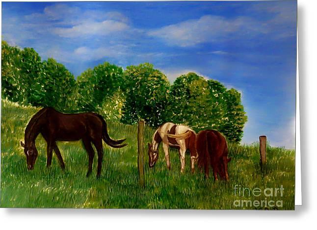 Field Of Horses' Dreams Greeting Card by Kimberlee Baxter