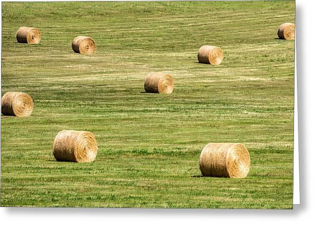 Field Of Large Round Bales Of Hay Greeting Card