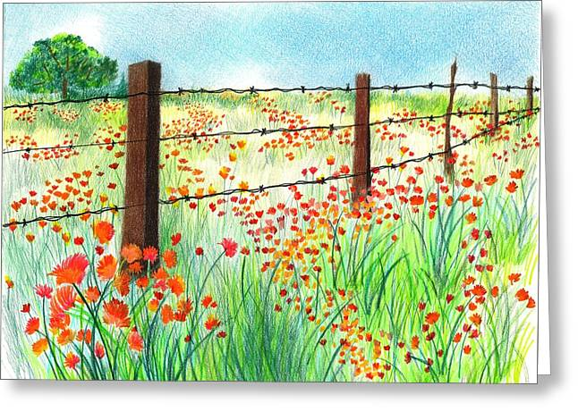 Field Of Poppies Greeting Card by Sharon Blanchard