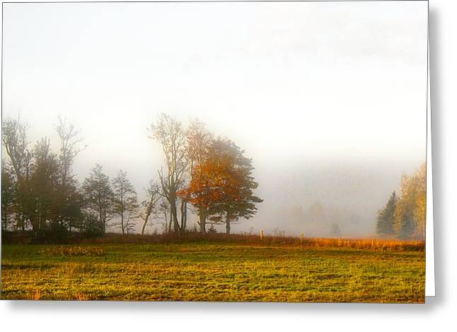 Field Of The Morn Greeting Card