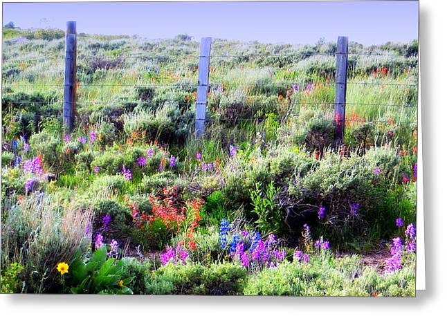 Greeting Card featuring the photograph Field Of Wildflowers by Karen Shackles