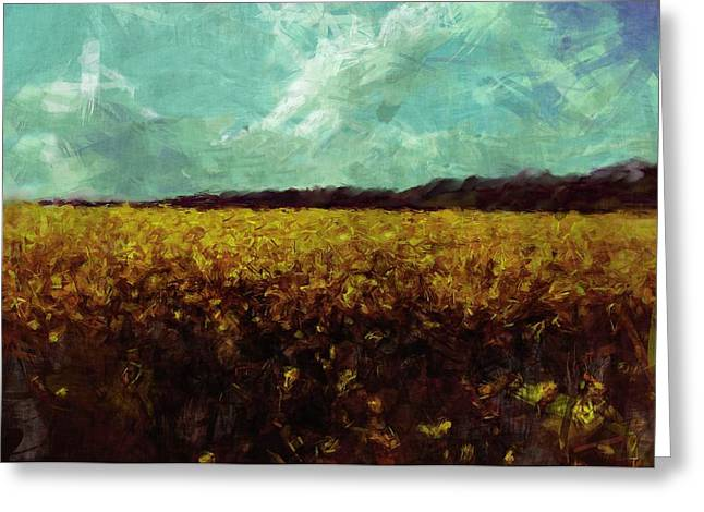 Field Of Yellow Greeting Card by Mark Denham