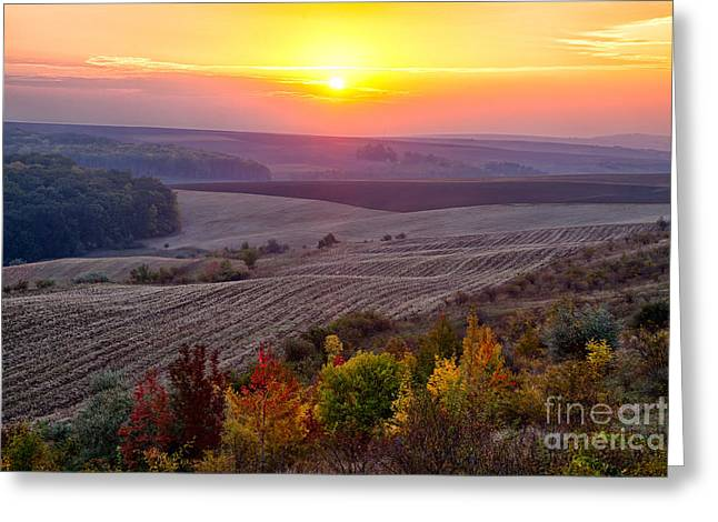 Fields Of Autumn Greeting Card