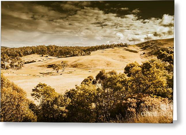 Fields Of Jericho Greeting Card by Jorgo Photography - Wall Art Gallery