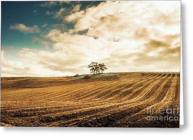 Fields Of Tasmanian Agriculture Greeting Card